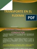El Floema.pdf