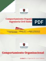 PPT_CO_La Organización Como Sistema