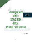 Modulo I Sistema de Gestion