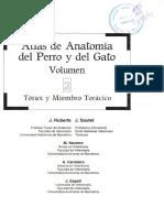 Atlas de Anatomia Del Perro y Gato II