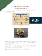 ectoparasitosis