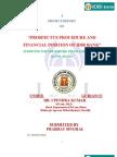 PROSPECTUS PROCEDURE AND FINANCIAL POSITION OF IDBI BANK