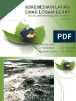 Bioremediasi Lahan Tercemar Logam Berat