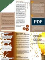 Incorporacion PI en Estudios Universitarios y FP.pdf