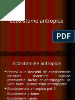 Ecosisteme antropice
