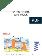 1st yr MBBS SPE.pptx