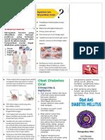 Leaflet Obat DM