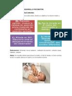 Pauta breve  del desarrollo psicomotor.docx
