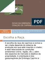 DICAS DA EMBRAPA PARA A CRIAÇÃO DE CAPRINOS.pptx