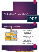 ANESTESIA RAQUIDEA FINAL.pptx