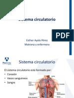 6 PA Circulatorio.pdf