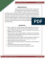 Informe Del Puente Breña