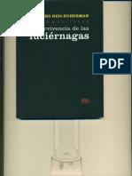 Supervivencia de Las Luciernagas Georges Didi Huberman