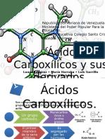 Acidos Carboxilicos y Sus Derivados