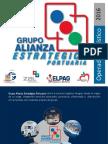 Grupo Alianza Estratégica Portuaria
