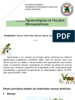 producao animal agroecologica