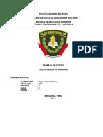DELINCUENCIA 12 hojas.pdf