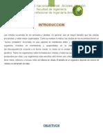 INFORME MELINA.docx