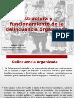 Estructura de La Delincuencia Organizada