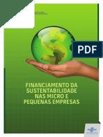 Financiamento Da Sustentabilidade Nas MPE