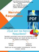nerviosr powerp