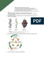 Bio Study Guide (1).docx