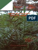 Manual Practico Para El Cultivo de Jengibre