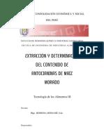 48742223 Informe Antocianinas 1