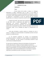 DIAGNOSTICO DE VIA.docx