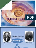 Teora Celular
