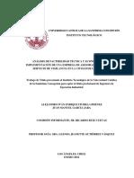 Analisis de Factibilidad Tecnica y Economica en La Implementacion de Una Empresa de Asesoras Del Hogar Con Servicio de Vigilancia