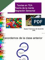 Integracion Sensorial y Teoria de La Mente 2016