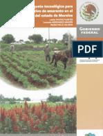 3880 Paquete Tecnológico Para El Cultivo de Amaranto en El Oriente de Morelos