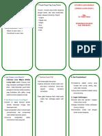Leaflet CLM.doc