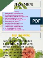 ppt-biji