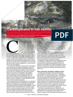 Carbohydrates in fish nutrition