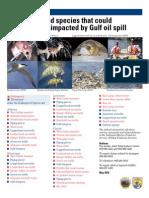 Wildlife species impacted by oil - U.S. Fish & Wildlife Service, MAY2010