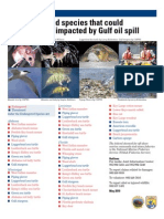 Wildlife species impacted by oil - U.S. Fish & Wildlife Service, MAY2010