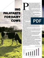 DESIGNING PALATANTS FOR DAIRY COWS