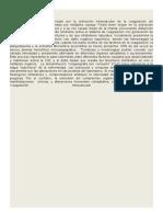 CID en Obstetricia