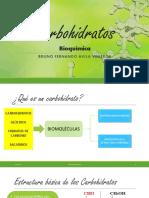 Carbohidratos Bioquimica USMP