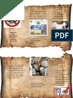 Leaflet-Narkoba amat lele.pdf