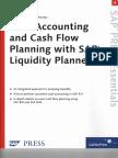 171282673 Sample SAP Liquidity Planner