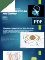 NEUROANATOMIA presentacion.pptx