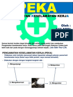 Safe Action - PEKA