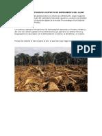 La Deforestación Produce Un Efecto de Enfriamiento Del Clima