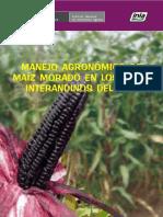 Manejo Integrado de Cultivo de Maiz Morado-Inia