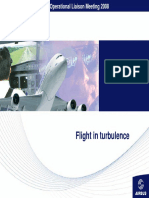 30_Flight_in_turbulence.pdf