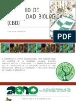 Convenio de Diversidad Biologica (Cbd)