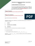 F-seg-sig-17 Acta de Reunión de Csst